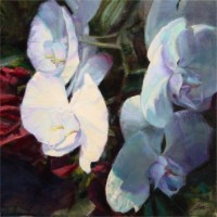 "Orchids, 20""x20"", Oil on Canvas (2005)"